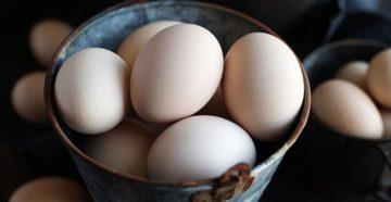 Яйца: в чем их польза для здоровья, состав яиц и как готовить