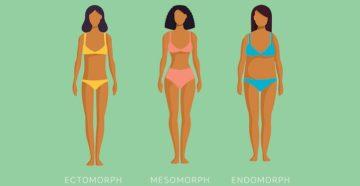 Типы тела питание: полное руководство.