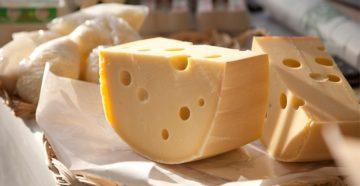 Сыр: виды сыров, польза и вред для организма, как он может повлиять на ваш вес и многое другое