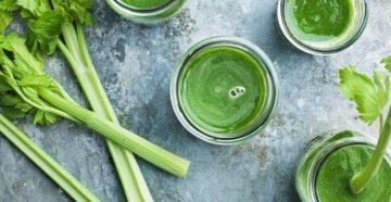 Сок сельдерея польза и вред для нашего здоровья