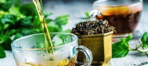 Зеленый чай и мята для похудения